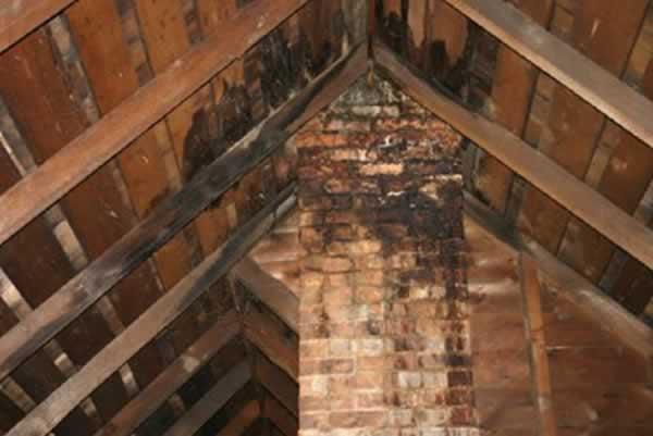damaged attic insulation