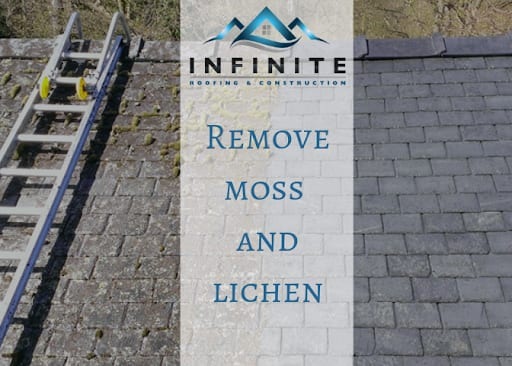 Diy Method To Remove Moss And Lichen With Vinegar